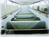 Pohled do rekunstruované budovy filtrů